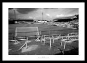 Millwall Photos