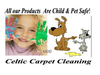 Eco friendly Deep Cleaning of Carpets & Upholstery