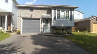1 bedroom baesment apartment for rent in North Oshawa