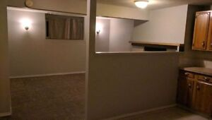 *2 bedroom  basment suite in NE all included $1100 * / furnished