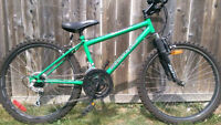 Mid-Size Mountain Bike
