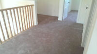 Carpet BRAND NEW priced to sell includes underpad and tackstrips