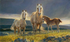 Nancy Glazier -  - Golden Glory - # 114/950 $45.99