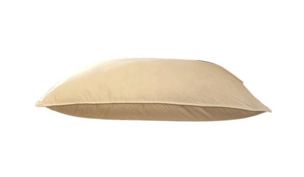 Top 5 Down Pillows Ebay