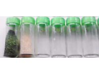 6 New Green Lids Sprinkler Top Clear Glass EMPTY Refillable Replacement Spice Jars.