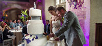 Discounted Wedding & Engagement Packages