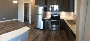 2 BR in Desirable Skyview AVAILABLE JULY 1 UTILITIES INCLUDED
