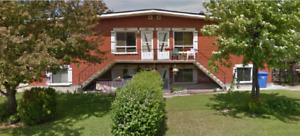 Very clean & spacious 2 bedroom apartment for rent in Blainville