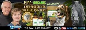Buy Pure Potent FULL SPECTRUM Organic CBD Oil Online - HempWorx Global OFFICIAL
