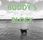 Buddy s Block