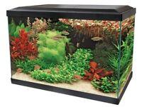 Superfish Aqua Expert 70 fish tank aquarium