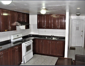 Renovated 2BR Furnished Basement Close to Centennial Progress.