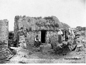 A4 old Photo Mountain Stage Cottage Cica 1890 taken by Robert French Historical