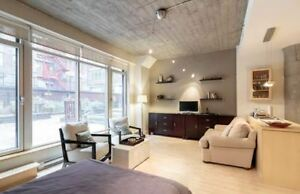 Place Des Arts with Private Garden Luxury Loft Corporate Space