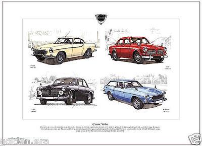 CLASSIC VOLVO - Fine Art Print A3 size - P1800 P1800ES, 122S & 123GT Amazon cars