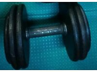 1 pair of 27.5kgs dumbbells, solid / compact fixed weights for more efficient training