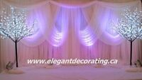 Fabulous wedding décor at an affordable price, package $850.00