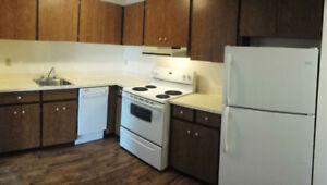 Come See Our Spacious 1 Bdrms - Lots of Sun! Pool & Fitness Room