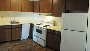 Spacious 1 Bdrm Apartment - Tons of Storage - Pet Friendly