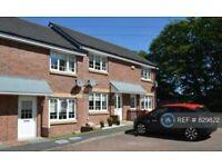 2 bedroom house in Wilkie Drive, Motherwell, ML1 (2 bed) (#829822)