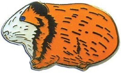 Anstecknadel Meerschweinchen, Pin, Anstecker, Brosche, Geschenkclip Meeri