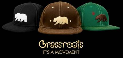 Grassroots Hats Kingsford Eastern Suburbs Preview