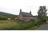 1 Bedroomed Cottage immediately available