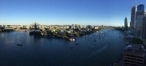 City APT wanted Share mates Brisbane City Brisbane North West Preview