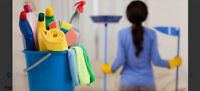 Jo's 24 hour deep clean maid services