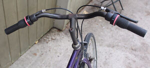 "Schwinn Crossfit Hybrid Road Bike 700x35c 19"" 18 Speed Stratford Kitchener Area image 3"