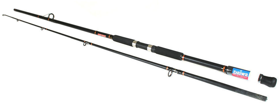 top 10 surf casting rods | ebay, Fishing Reels