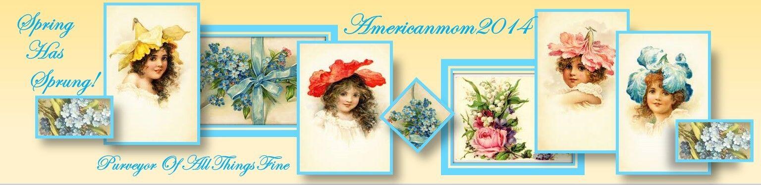 AmericanMom2014