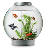 Fish Tank for sale (60L/18 gallons) Bio Orb
