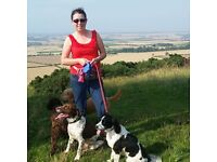 Professional & affordable dog walking Port Seton, Tranent, Longniddry & Prestonpans