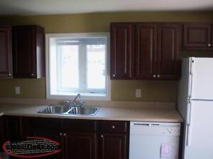2 Bedroom Above Ground Apartment - Cable & Internet Included St. John's Newfoundland image 1