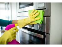 Professional Domestic Cleaning Service