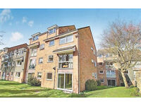 1 bedroom flat in Beauchamp Place, Oxford, OX4