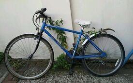 Raleigh bike / bicycle ladies blue