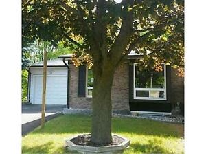 Fully Renovated Two Bedroom with private YARD