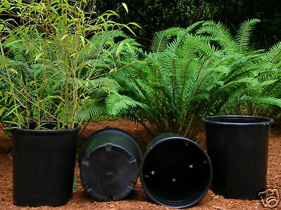 Nursery pots plant pot 30 NEW THICK TRADE 7 gallon TALL POTS FREEE SHIPPING