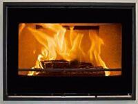 Scan DSA 7-5 insert wood burning fireplace