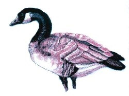 Embroidered Sweatshirt - Canadian Goose BT3903