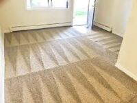 Eva's Premier Cleaning makes carpets look like new at $35 a room