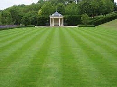 GENERAL PURPOSE LAWN GRASS SEED  PRE SEED FERTILISER Mix 20 kg NEXT DAY