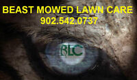 BEAST MOWED LAWN CARE BOOKING FOR SPRING CLEAN AND LAWN MOWING