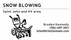 SNOWBLOWING/SNOWREMOVAL AND SALT SERVICE