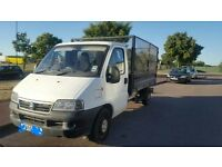 Fiat Ducato 2005 2.8 jtd caged tipper. Perfect runner, strong tipper, clean