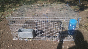 Commercial rabbit cages