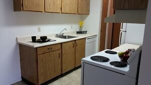 2 Bedroom Suite - Pet Friendly - Spacious and Bright!