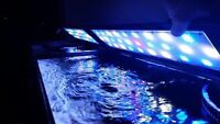 Full Spectrum LED light for fresh/saltwater aquarium